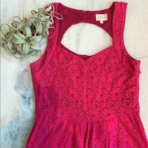 Anthropologie Pink Lace A-Line Dress